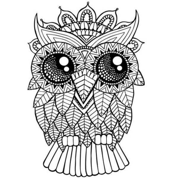 61 mandalas y zentangles con buhos y lechuzas dise os y for Disegnare online 3d