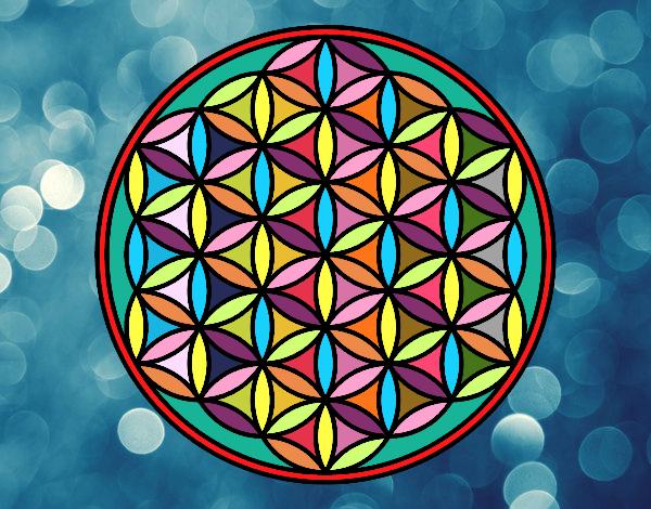 Mandala Flor De La Vida Tatuajes Diseños Dibujos Para Colorear De