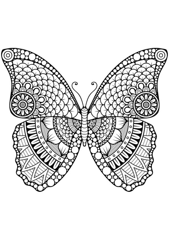 Increíble Mariposas Para Colorear Bandera - Dibujos Para Colorear En ...